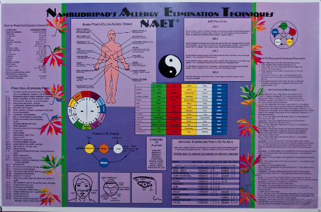 THE NAET ENERGETIC CHART
